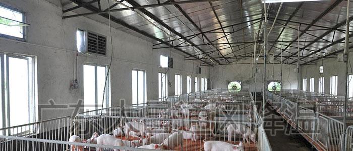 养殖场通风降温