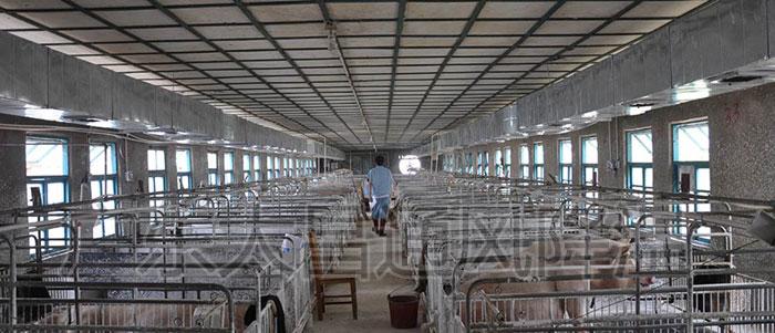 养殖厂环保空调降温工程