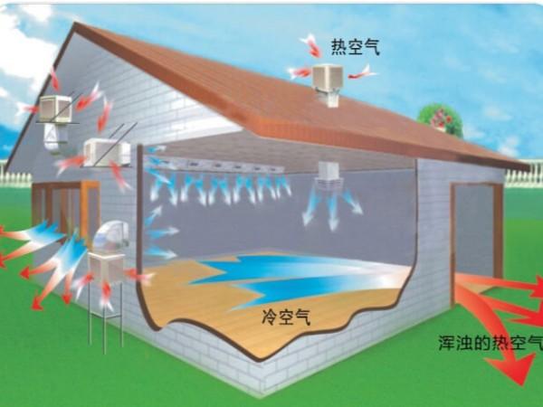 家具制造厂车间通风降温方法