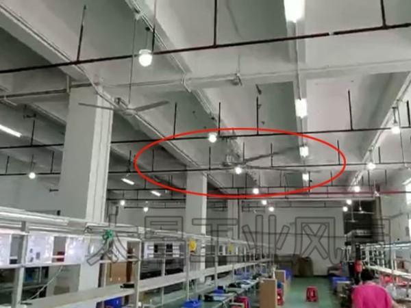 大型风扇 大吊扇 工业大风扇的应用介绍