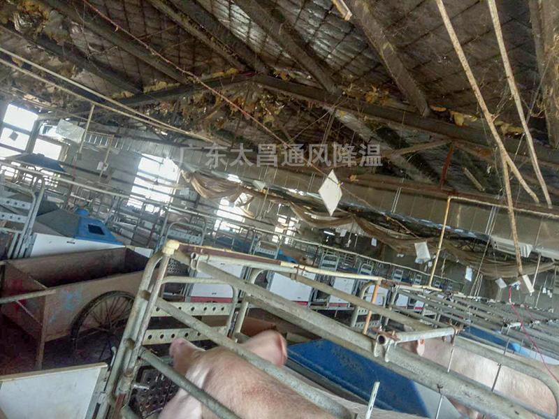 养殖场通风降温常用设备3